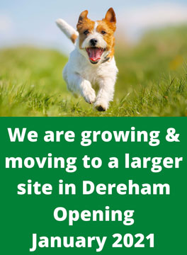 """Dog in sunny field captioned """"We are growing and moving to a larger site in Dereham opening January 2021"""""""